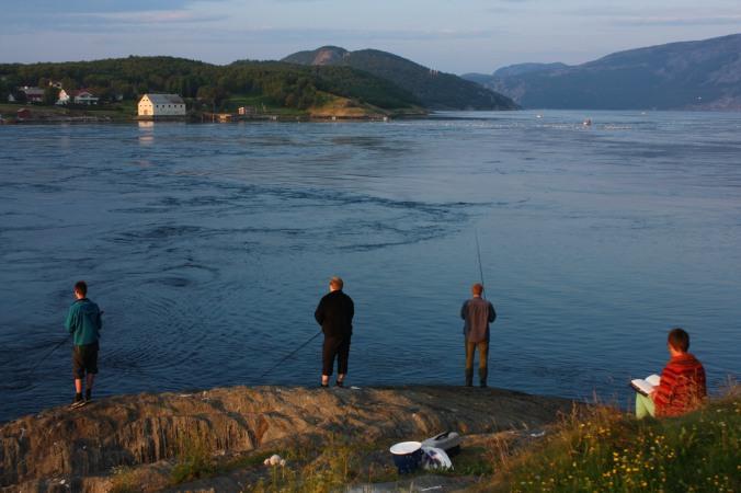 Kveldsfisking i Saltstraumen er ikke ensomt